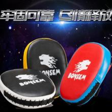 Professional Boxer / Kick Boxer Boxer Bounce