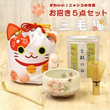 Good selection carefully Gion Matcha 5 point set calico cat invitation drawstring tea utensils